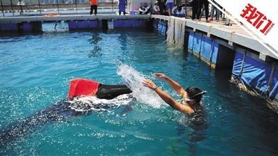 60小时营救三亚搁浅领航鲸